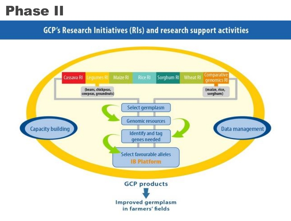 GCP Research Initiatives