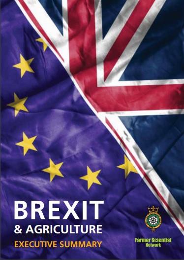 Brexit Report