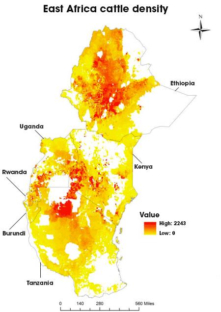East Africa cattle density