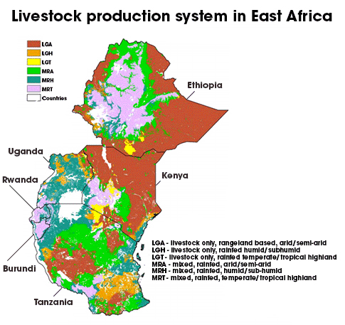 Livestock production in East Africa
