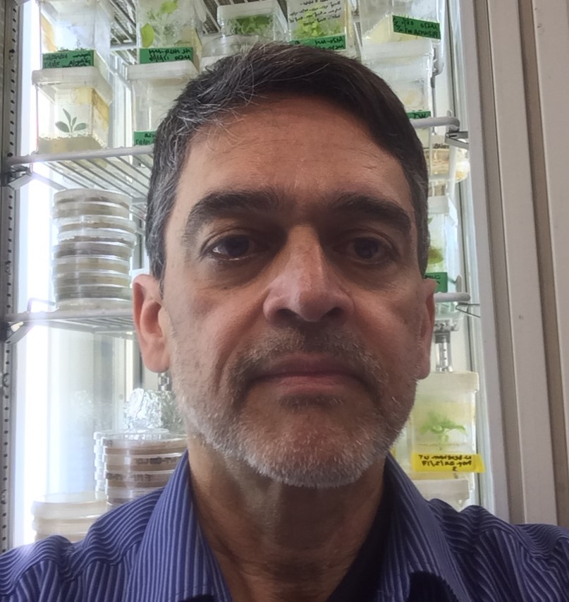 Dr Anil Day, University of Manchester
