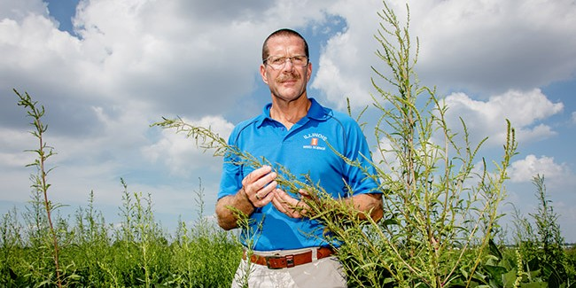 Superweed resists another class of herbicides