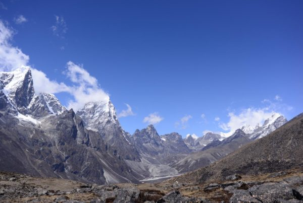 View towards Khumbu and Cholatse from below Ama Dablam at about 4,900 m showing typical subnival vegetation in the foreground