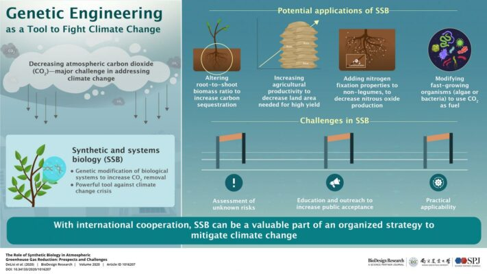 Engineering a way out of climate change: Genetically modified organisms could be the key