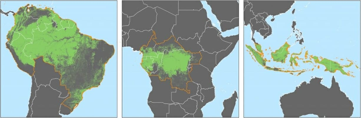 Subscriptions to satellite alerts linked to decreased deforestation in Africa
