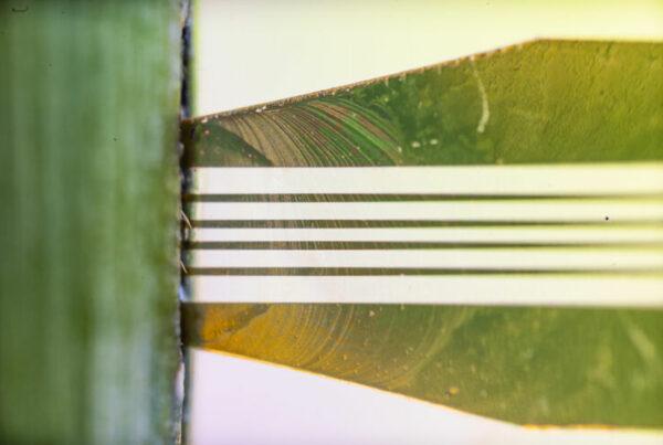 ugar sensors are based on organic electrochemical transistors