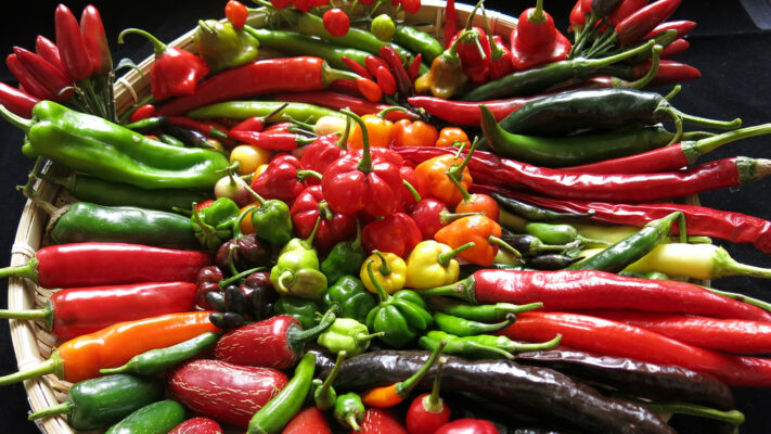 Study of chilli genetics could lead to greater variety on our plates